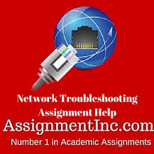 Network troubleshooting Assignment Help and Homework Help
