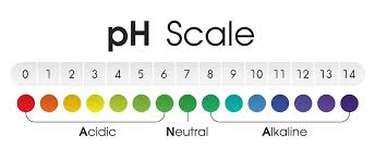 Alkaline Ph Chart The Chart Shows The Acidic Neutral And Alkaline Ph Of