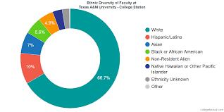 Texas A M University College Station Diversity Racial