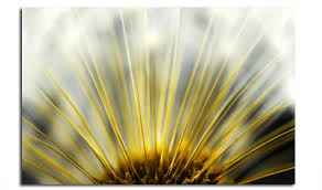 dandelion heart floral abstract wall fabulous wall art yellow and grey on black grey and yellow wall art with dandelion heart floral abstract wall fabulous wall art yellow and
