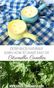 learn how to make your own diy citronella candles for summer get rid of bugs