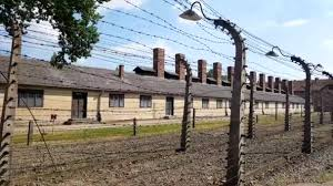 barbed wire fence concentration camp. POV Of Barbed Wire Fences. Auschwitz Birkenau Camp, German Nazi Concentration Camp. About 1.3M People Were Sent In The Other Side Fences, Fence Camp T