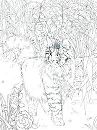Printable Coloring Pages Of Cats And Dogs Coloring Pages Cats