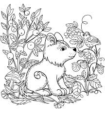 This is a good picture to start things off with as it is relatively. Puppy Coloring Pages Coloring Rocks