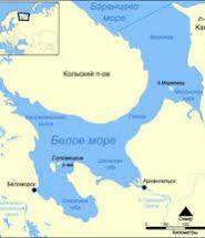 Біле море реферат dovidka biz ua Біле море реферат