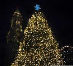 Faneuil Hall Christmas Tree Lighting 2016 10 Best Christmas Trees Around Boston You Must See Kid 101