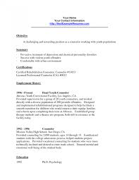 Counselor Job Description For Resume Camp Counselor Resume Resumes Basketball Job Description For 22