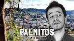 imagem de Palmitos Santa Catarina n-16