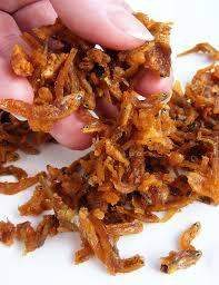 Waar zaden tabernaemontana sanango kopen?