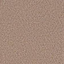 home decorators collection hypoallergenic carpet samples