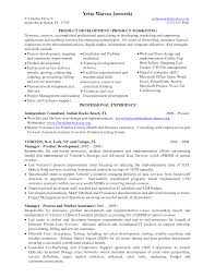 Amusing Sample Resume Application Development Manager On Business