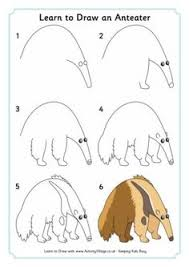 Small Picture Anteater Coloring Page Worksheets Visual aids and School