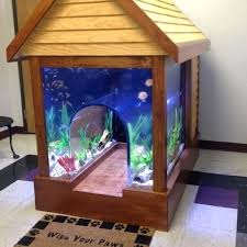 best place to put a fish tank in your house dog on the hunt