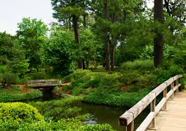 japanese garden at hermann park in houston texas