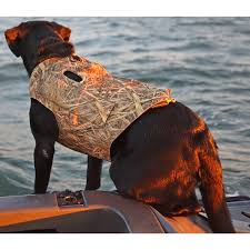 Avery Boaters Dog Parka