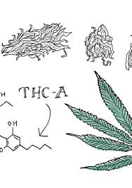 Easy drawing ideas for cool things to draw when you are bored. The Best Weed Edible Recipes