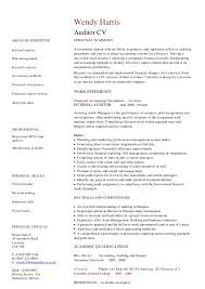 resume internal auditor