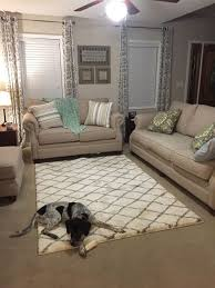 not sure about area rug over carpet how does this look don t mind the dog too big or small or does it even go with my living room clueless