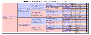 Horse Pedigree Chart Dash Of Sugar Moon Pedigree Chart By Air Mail Quarter