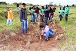 imagem de Paranhos Mato Grosso do Sul n-18