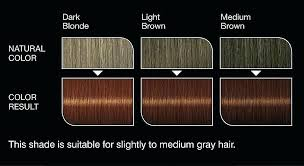 Medium Brown Hair Colour Chart Shades Of Brown Hair Color Chart Keune Lajoshrich Com