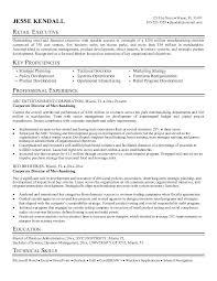 Merchandiser Resume Sample Free