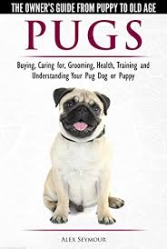 Pug Dog Vaccination Chart Pugs The Owners Guide From Puppy To Old Age Choosing Caring For Grooming Health Training And Understanding Your Pug Dog Or Puppy See More