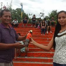 Edy Estrada docente - Home   Facebook