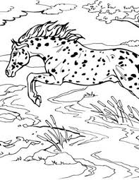 Select from 35478 printable coloring pages of cartoons, animals, nature, bible and many more. Jumping Horse Coloring Page Breyerhorses Com