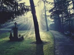 Trauersprüche Lebensweisheiten Und Sprüche
