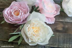 Peony Paper Flower Diy Crepe Paper Peonies In Cream Blush Colors Lia Griffith