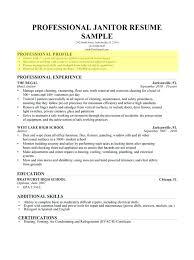 Profile Statement For Resume Interesting Examples Resume Profile Statements Of A For Example Students Sample