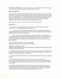 System Engineer Resume Format Unique Server Administrator Resumes