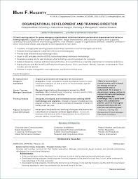 Resume Meaning Interesting 60 What Is The Meaning Of Resume Free Resume