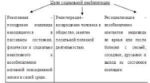 Курсовая работа Социальная реабилитация инвалидов и методика её  Краснодар 2010