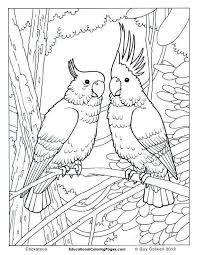 Free Printable Birds Coloring Pages