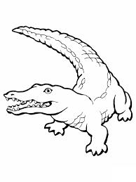 Dessin De Coloriage Alligator Imprimer Cp00776