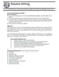 Professional Resume Objective Career Objective On Resume Wikirian Com