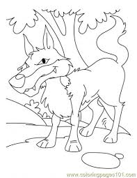 Small Picture Wolf Coloring Page11 Coloring Page Free Wolf Coloring Pages