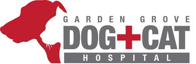 garden grove dog and cat hospital