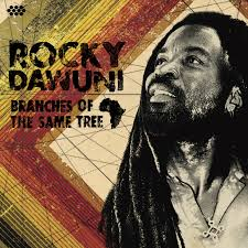 Rocky Dawuni Shine A Light Listen Free To Rocky Dawuni Shine A Light Radio Iheartradio