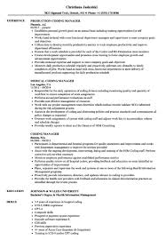 Career Builder Resume Writer Business Analysis Skills Career Builder