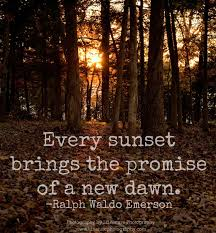Nature Quotes Emerson Ralph Waldo Emerson Quotes Pinterest Inspiration Emerson Nature Quotes