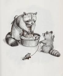 Raccoonおしゃれまとめの人気アイデアpinterest Mocha