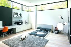 dog friendly area rugs suede beds bedroom with floating shelves acrylic braided rug home interior deco pet friendly rug