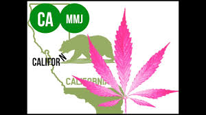how to get or renew your ca mmj card