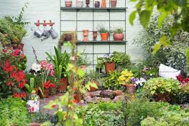 Small Picture Great Ways To Improve Your Garden on a Budget