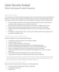 Entry Level Cyber Security Resume International Business Management ...