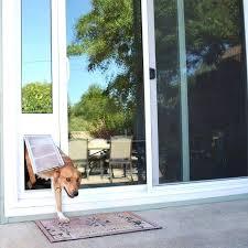 can you put a dog door in a glass door flap panel dog door sliding glass