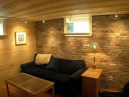 Finished Basement Ideas Low Ceiling Maduhitambimacom - Finished basement ceiling